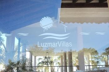 Luzmar Vilas
