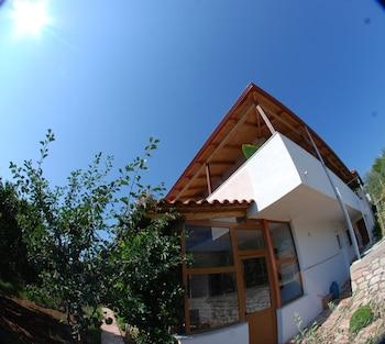 Natural Holiday Houses