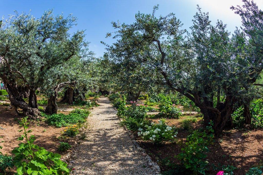 BOBOTEAZA ISRAEL - Miracolul Intoarcerii Raului Iordan 2021