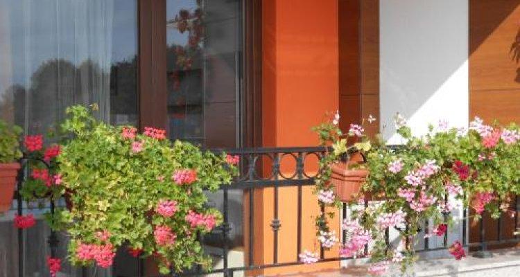 Mirage of Nessebar Hotel & Apartments - Hotel