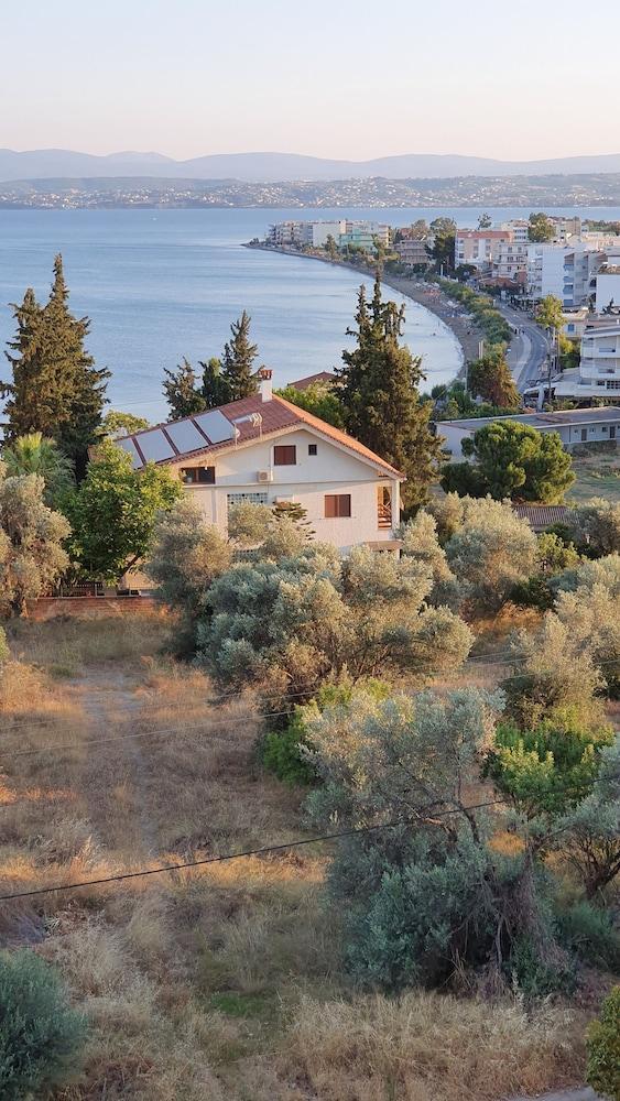 Lefkadi Apartments By The Sea