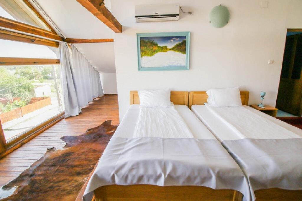 Zen Eco Villa