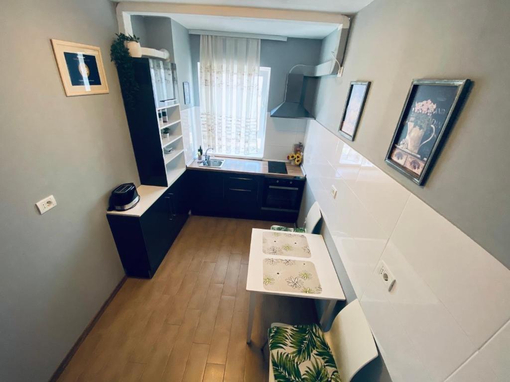 Gray Apartment Oradea