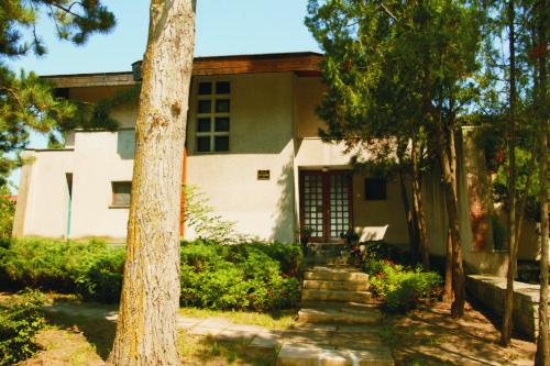 Vila Plopul