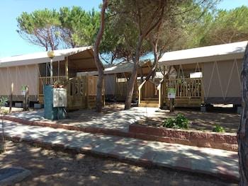Camp Torre Del Porticciolo