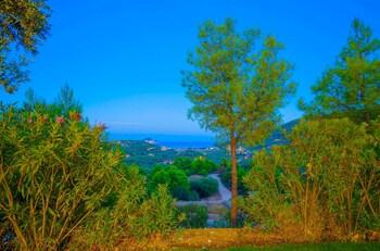 Keri View