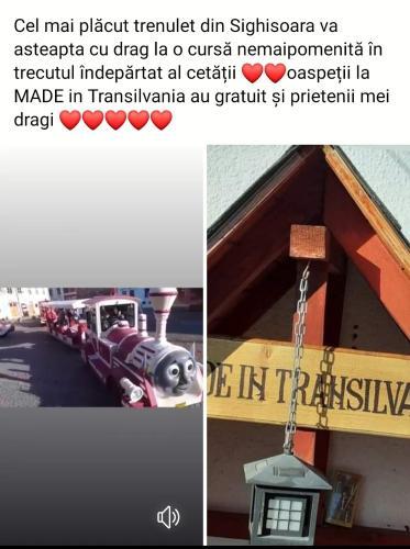 Made In Transilvania