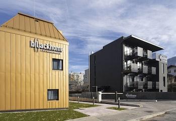 B(l)ackhome City Apartments