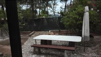 Blue Green Studios  Camp Pefkari