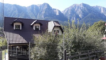 Chalet With 5 Bedrooms in Bușteni, With Wonderful Mountain View and En