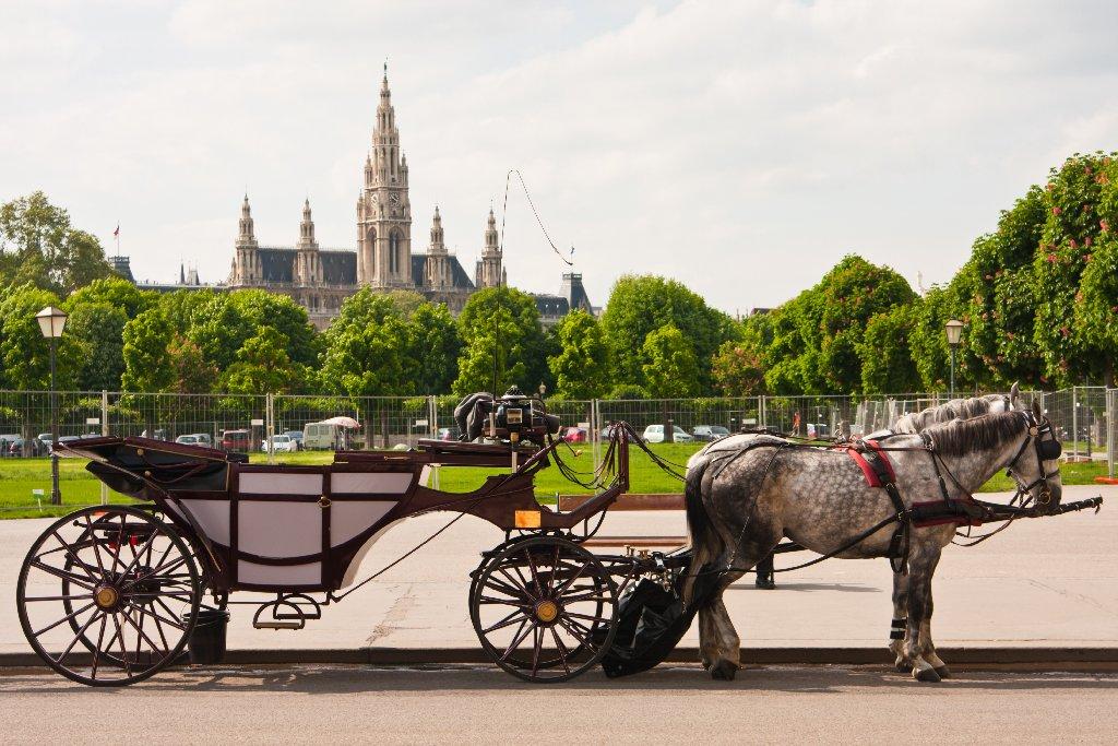 VIENA 2021 - In pasi de vals prin capitala muzicii