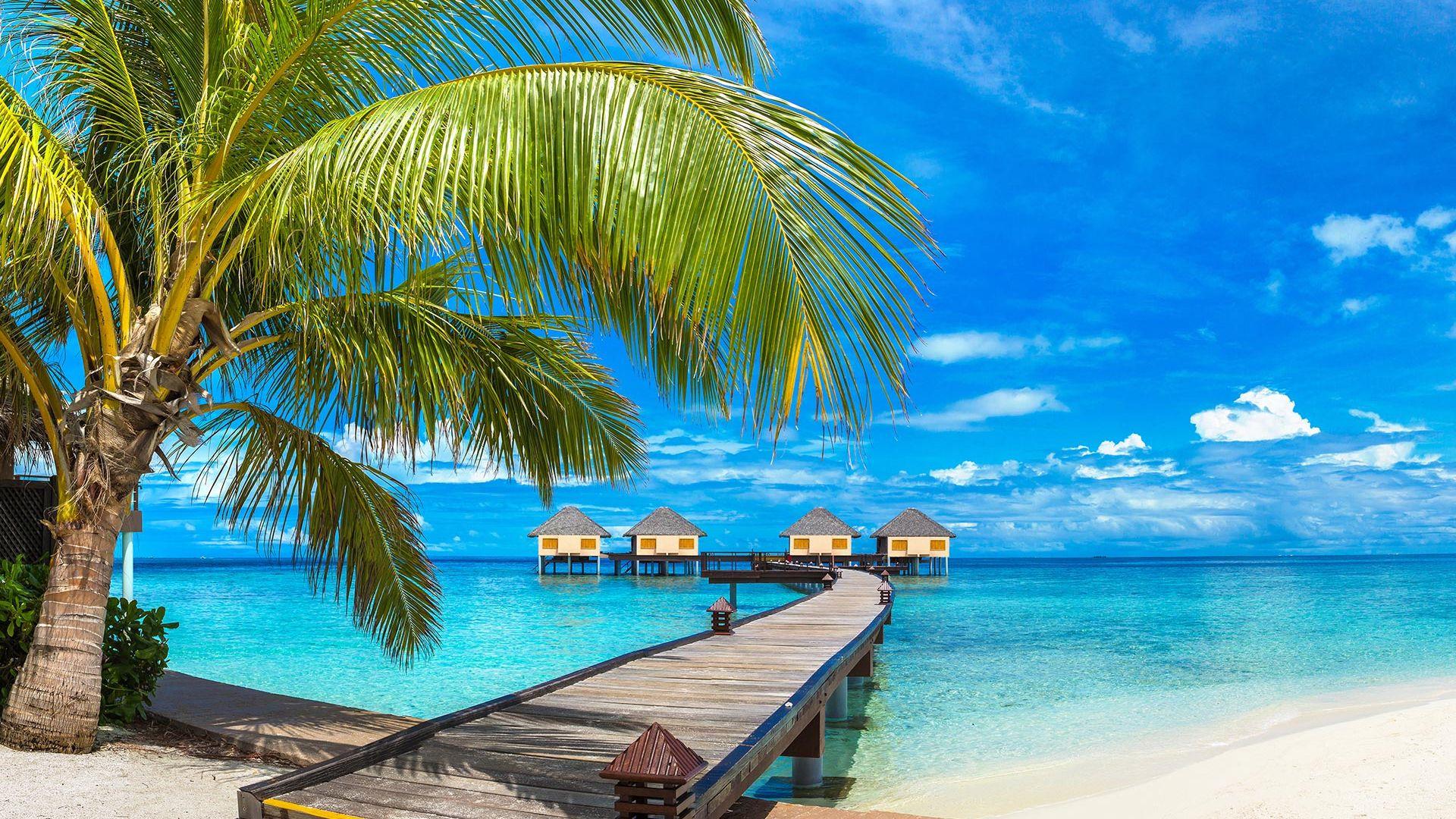 Sejur plaja Maldive, 12 zile
