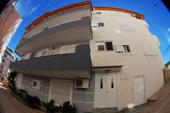 Vila Alvin