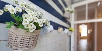 Casinha Das Flores