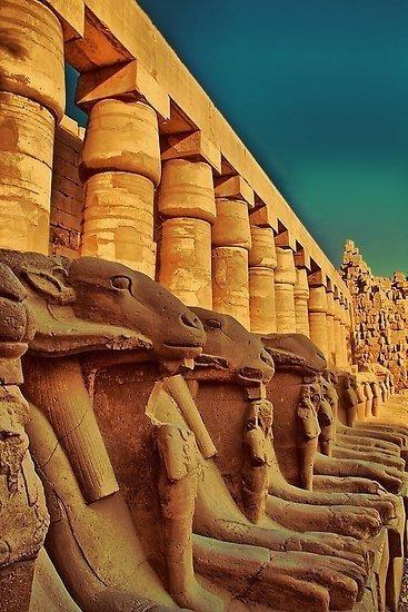 EGIPT 2021 - Plecare 06.04 (grup 2)