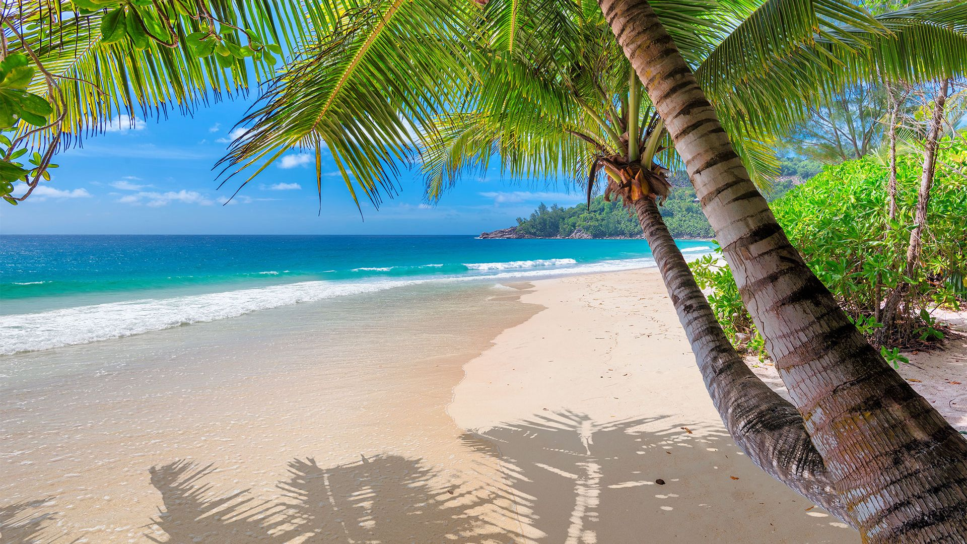 Craciun 2021 & Revelion 2022 -  Sejur plaja Montego Bay, 12 zile