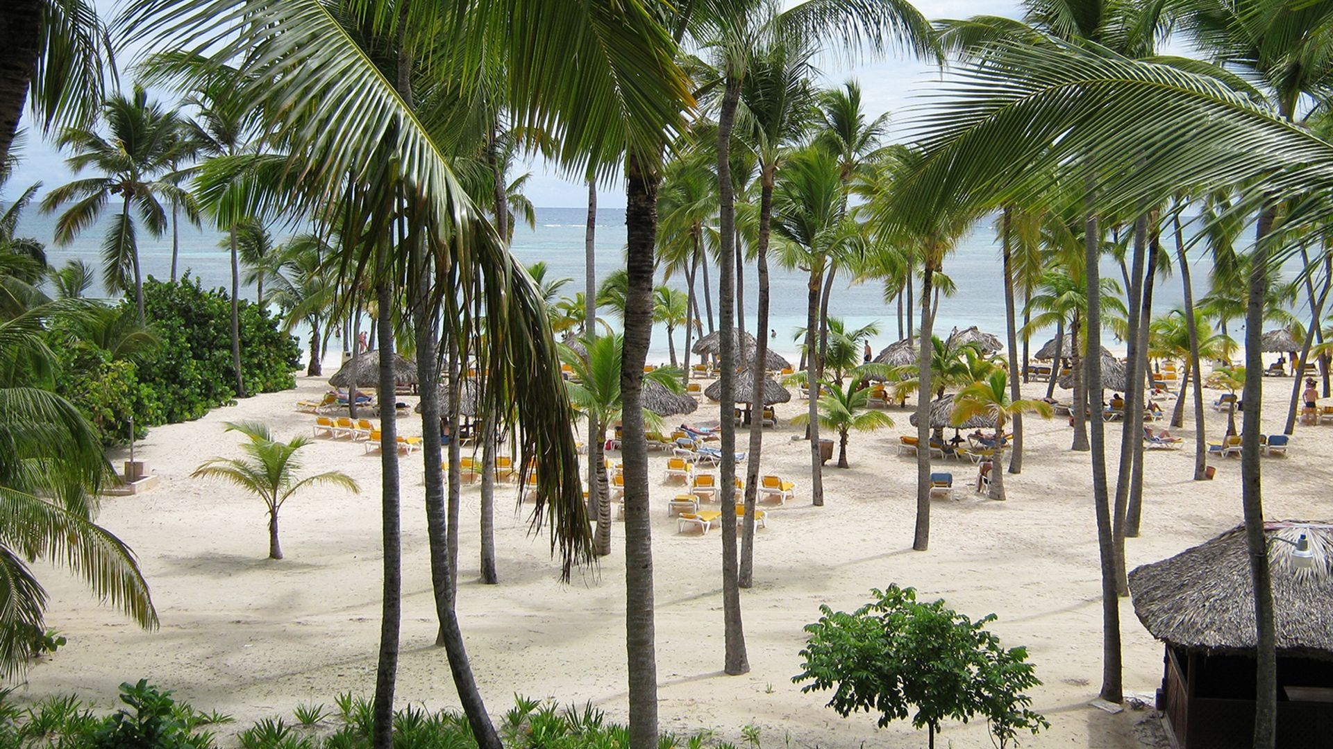 Sejur plaja Punta Cana, 11 zile - aprilie 2022