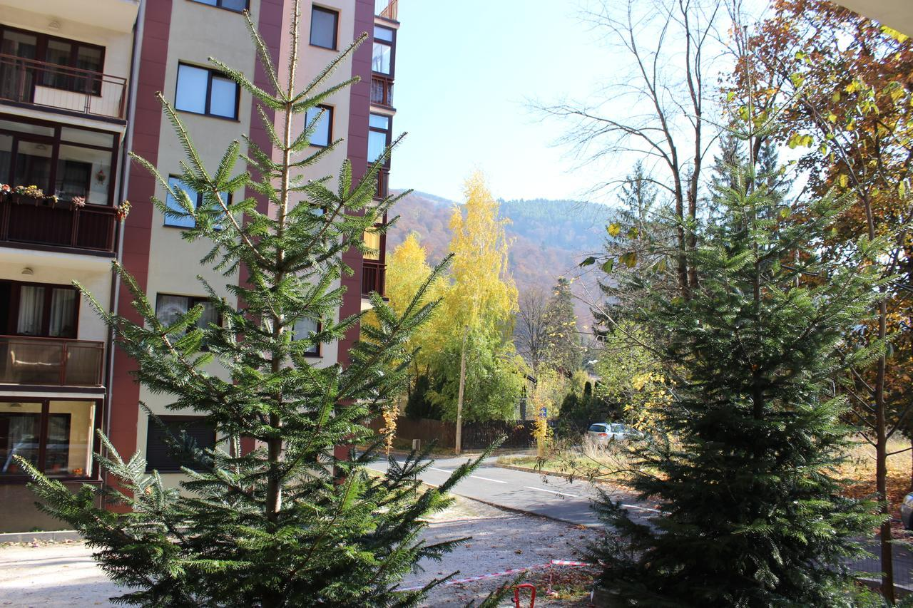 Sinaia Relax Residence