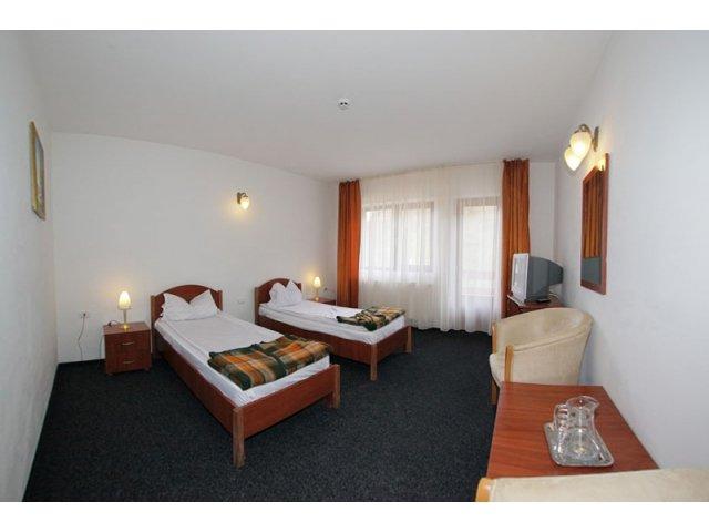 Hotel Paltinis (Borsa)