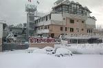 Palace Nardo