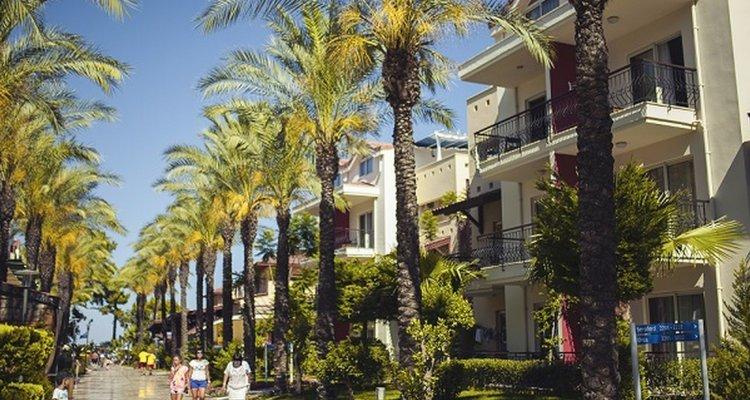 Crystal Aura Beach Resort & Spa – All Inclusive