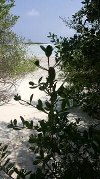 Quicksand Rasdhoo