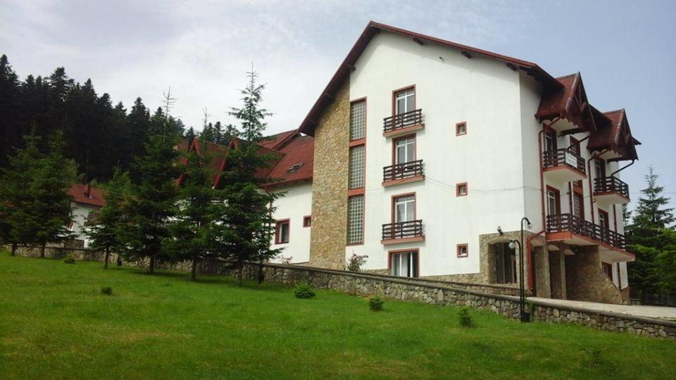Hotel FLOARE DE COLT