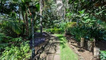 Blue Sea Costa Jardin & Spa