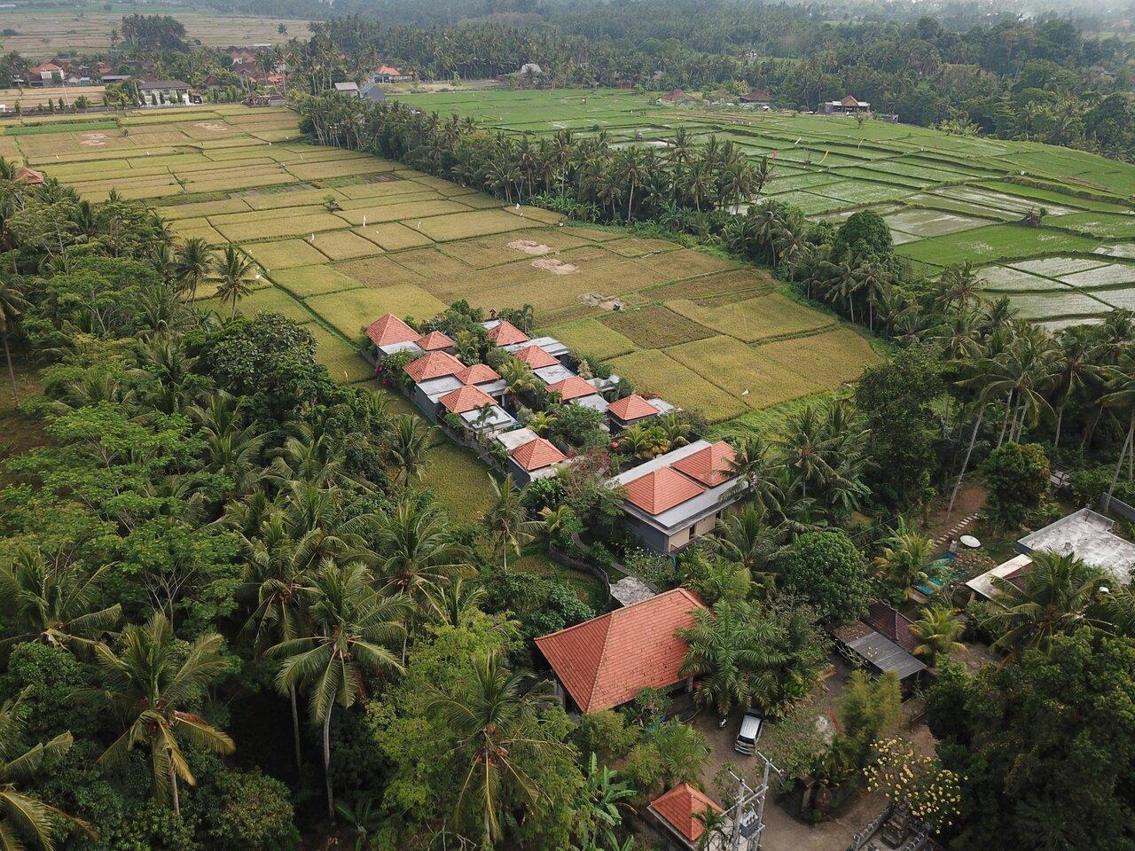 Asri Sari Villa Ubud