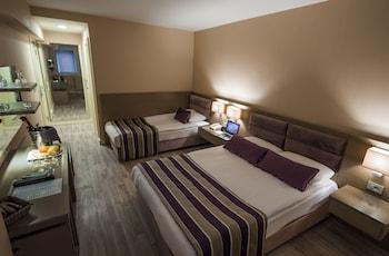 The New Hotel Zeybek