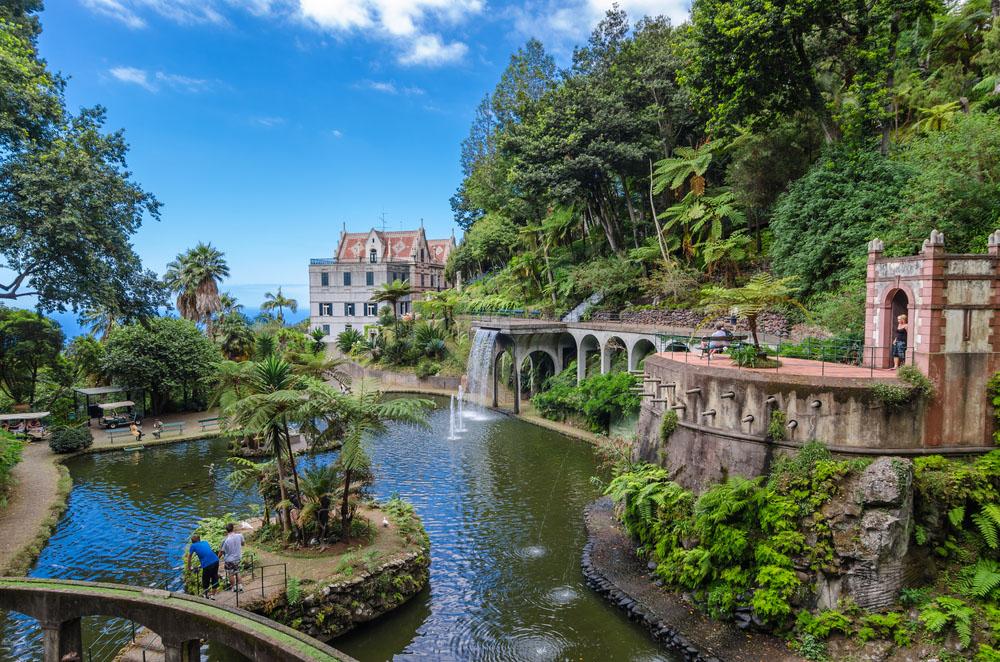 Craciun Madeira Insula Florilor