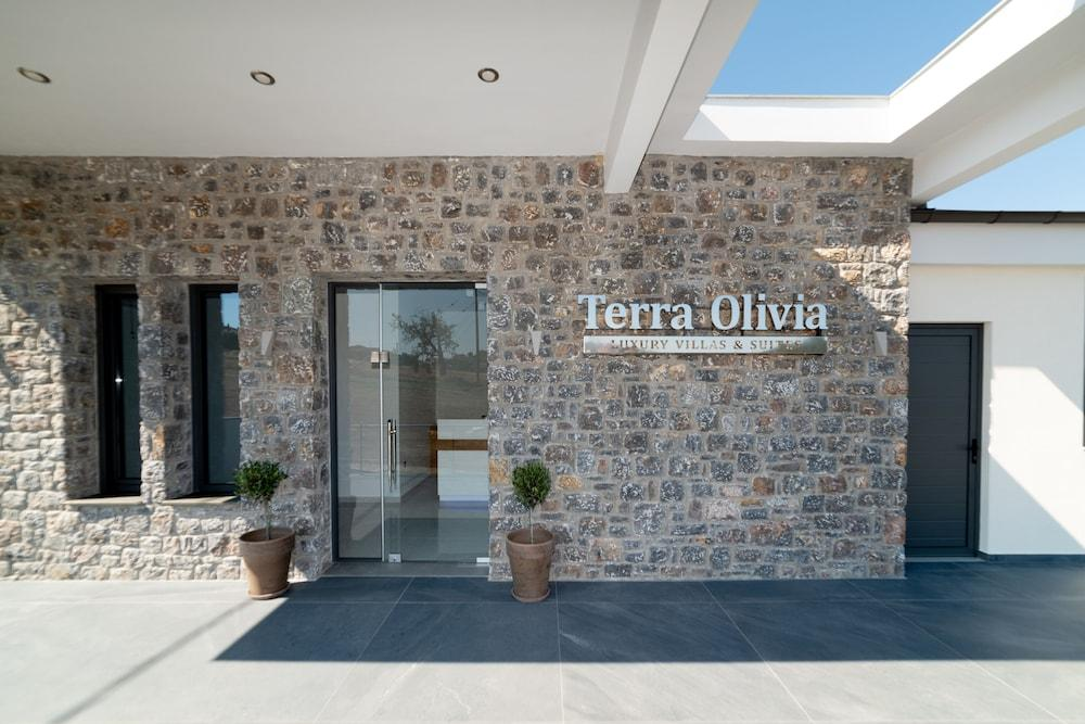 Terra Olivia Luxury Villas And Suites