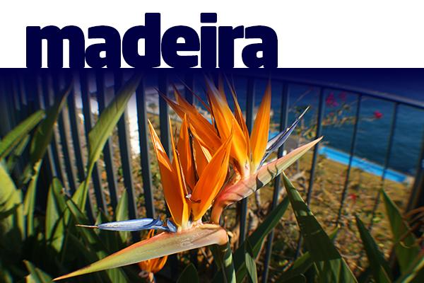 MADEIRA - SEJUR 2020 - Hotel 5 Stele