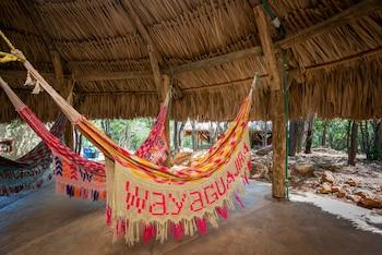 Waya Guajira