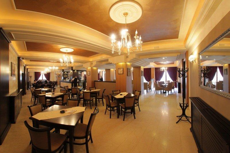 Hotel Gabriela (Viseu de Sus)