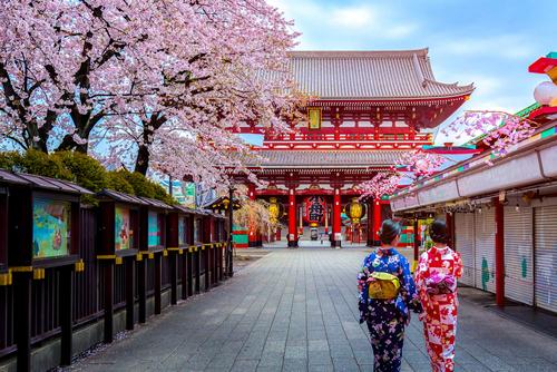 Circuit Japonia