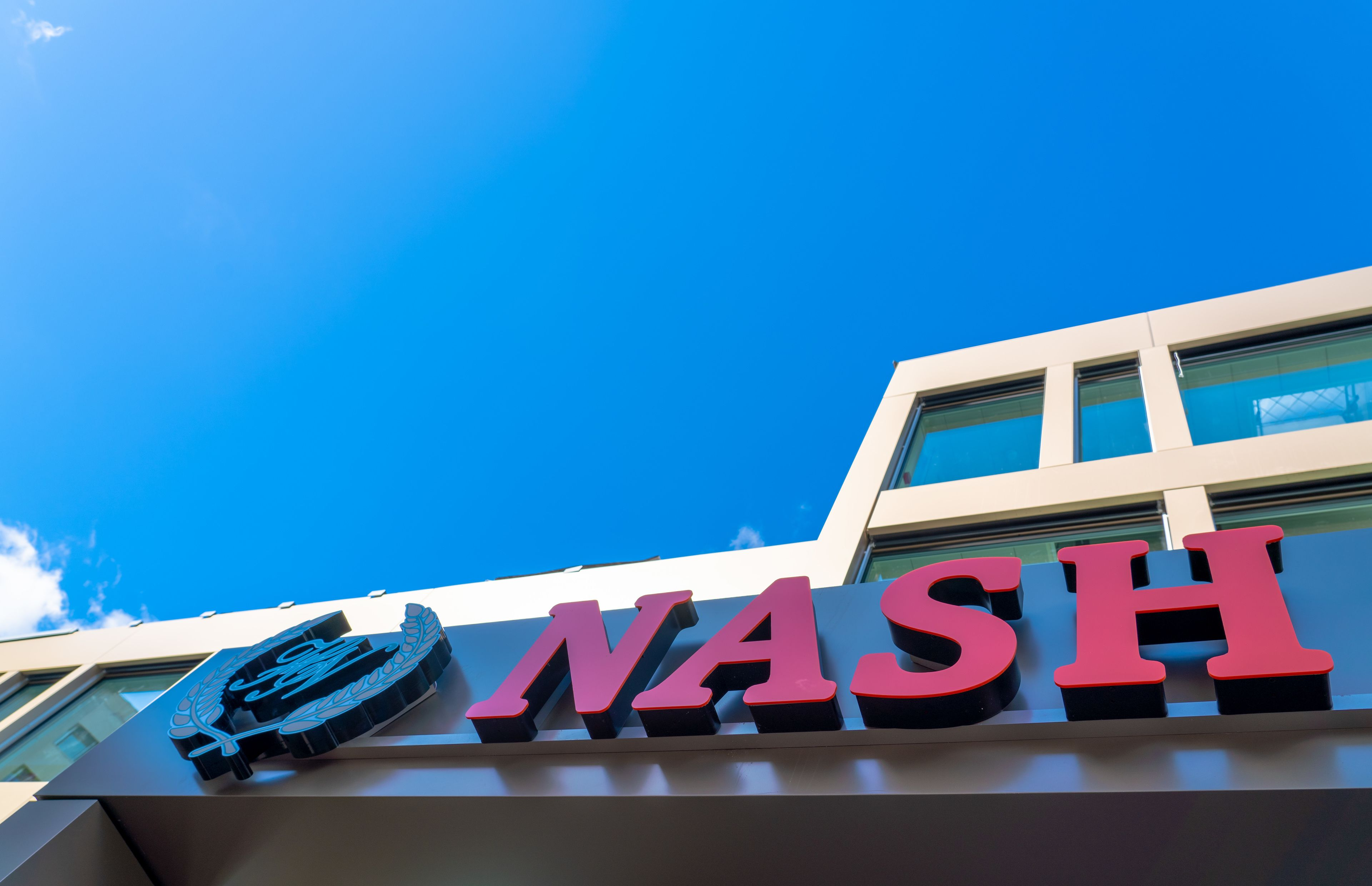 Nash Pratik