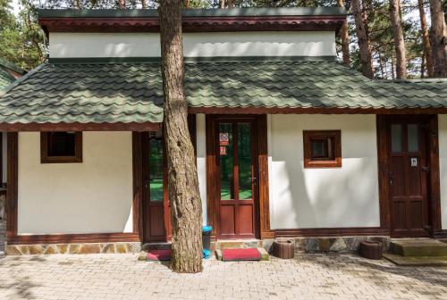 Complex Parc Pini Moinesti
