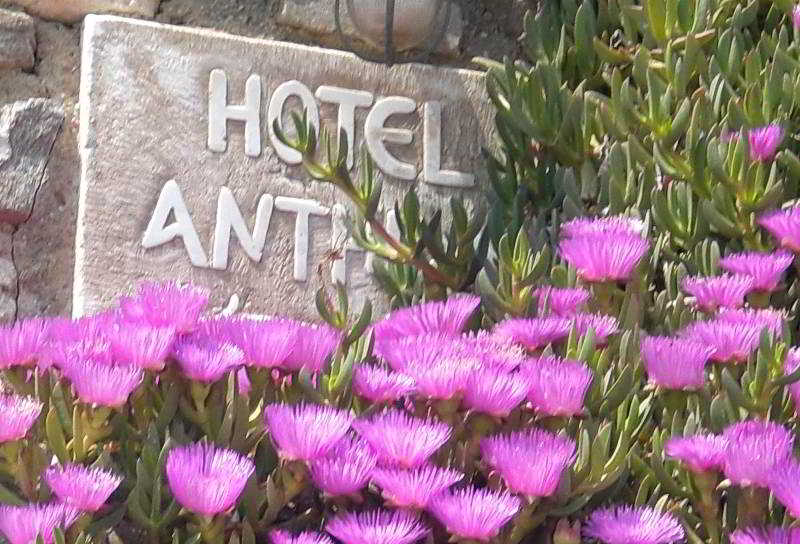 Anthippi Guest House