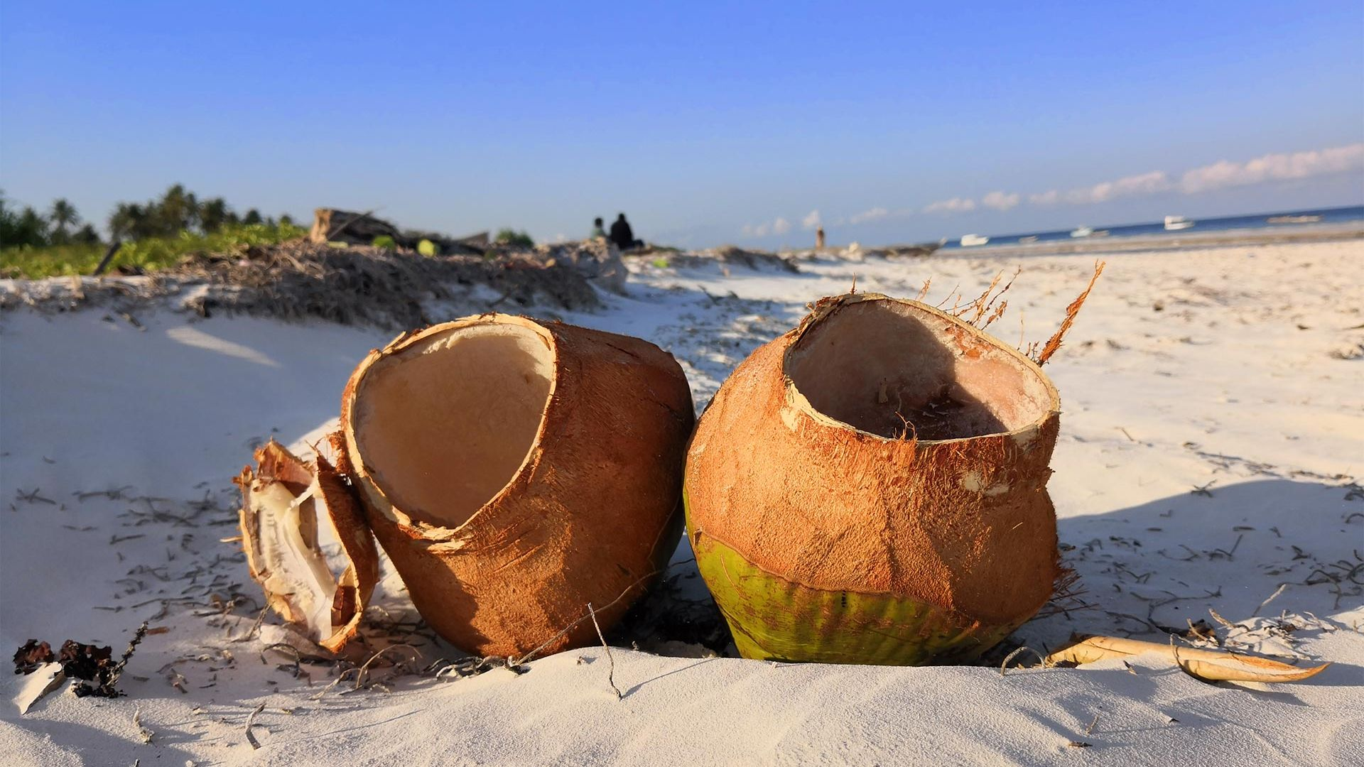 Sejur charter Diani Beach, Kenya, 9 zile - 29 noiembrie 2021