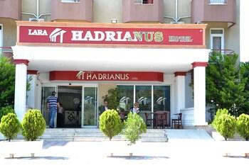 Lara Hadrianus
