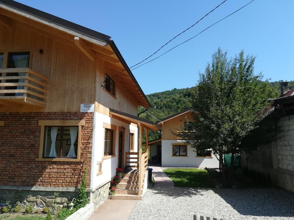 Guest House Carpathia (Viseu de Sus)
