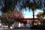 Residence  E Depandance Villa Tina