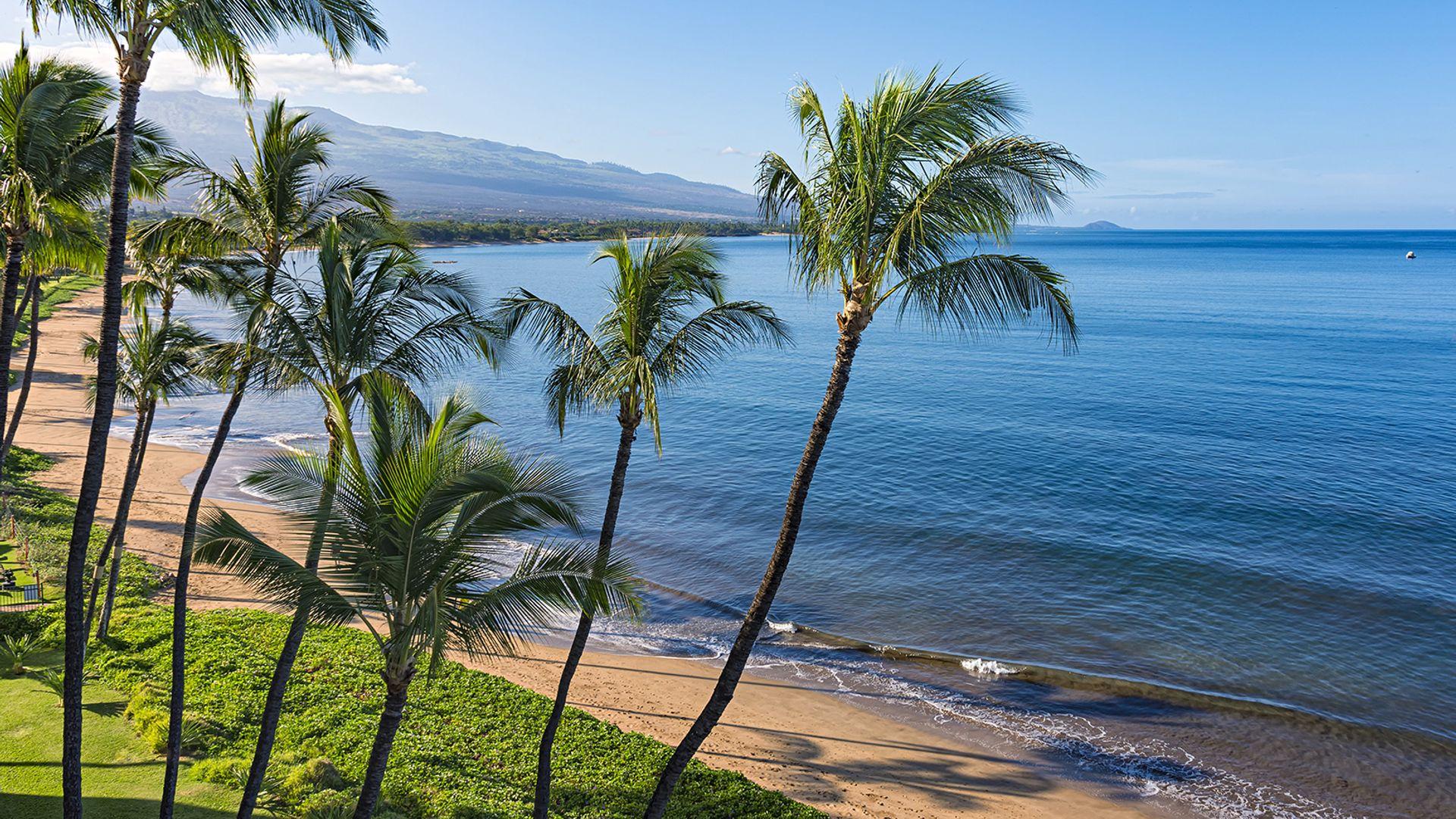 Discover SUA Vest & Hawaii cu Razvan Pascu, 20 zile - august 2021