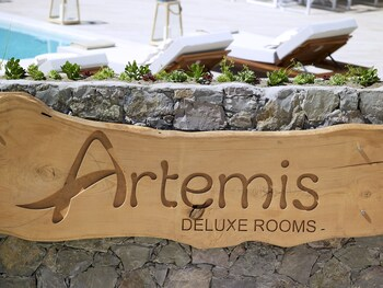Artemis Deluxe Rooms