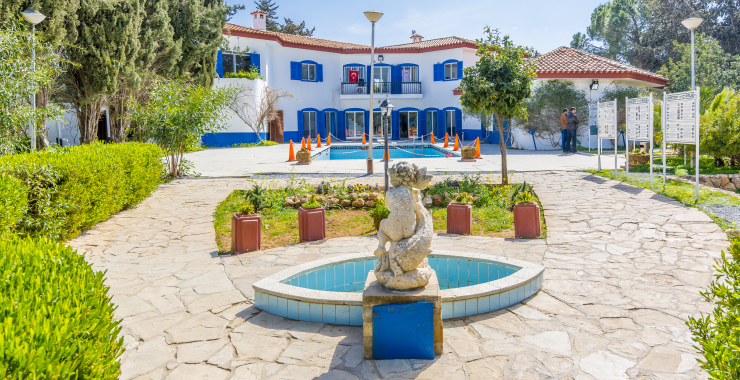Revelion Cipru de Nord (7n)
