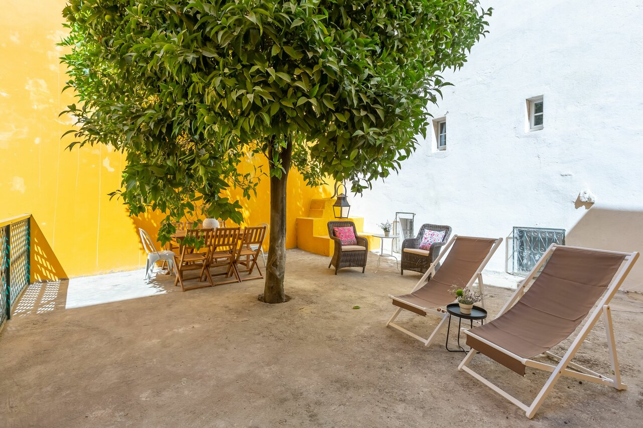 Bright And Spacious W/ Orange Tree Patio Apartment By Timecooler