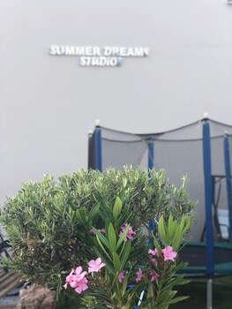 Summer Dreams Studios