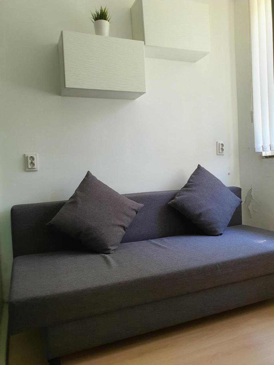 Bonsai Apartment Vitosha