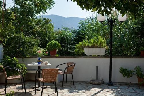 Sofias Garden